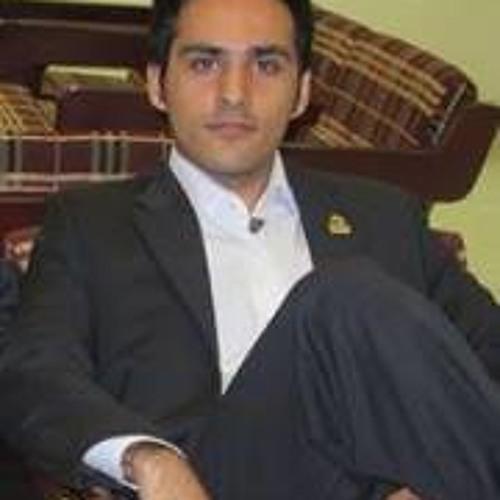 Iman Omidvar's avatar