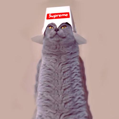 DaDa KingZ's avatar