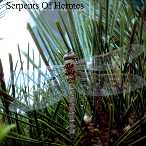 Serpents Of Hermes's avatar