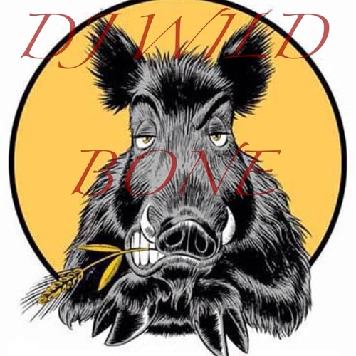 dj wild bone's avatar