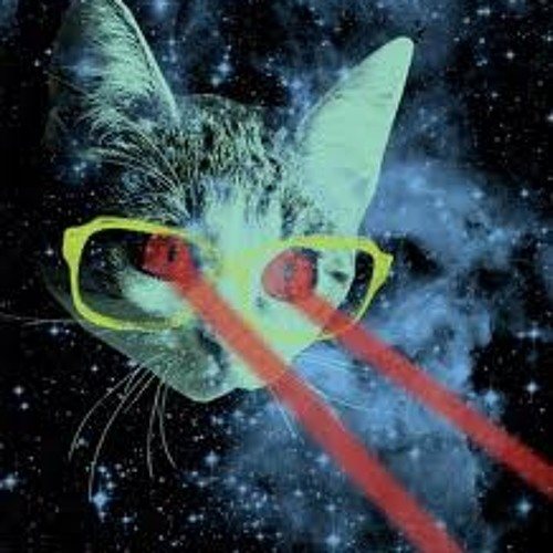Chunky Cat's avatar