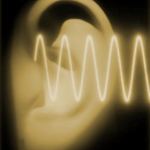 morgan karlsson's avatar