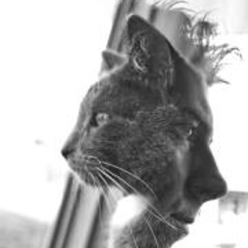 Lensflair Photos's avatar