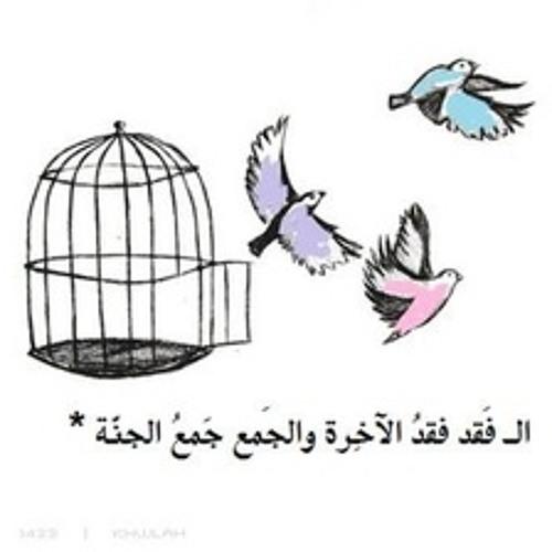 mnaar al3amr's avatar