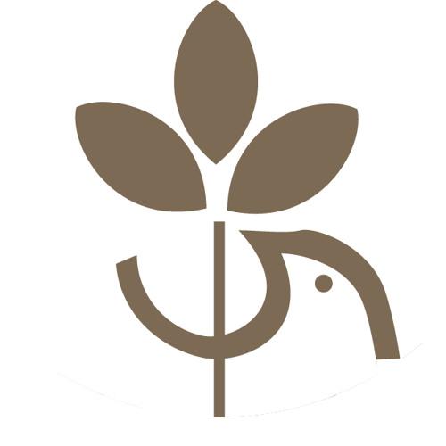 Université De Paix Asbl's avatar