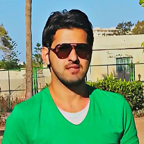 Mohamed A.Hamza's avatar
