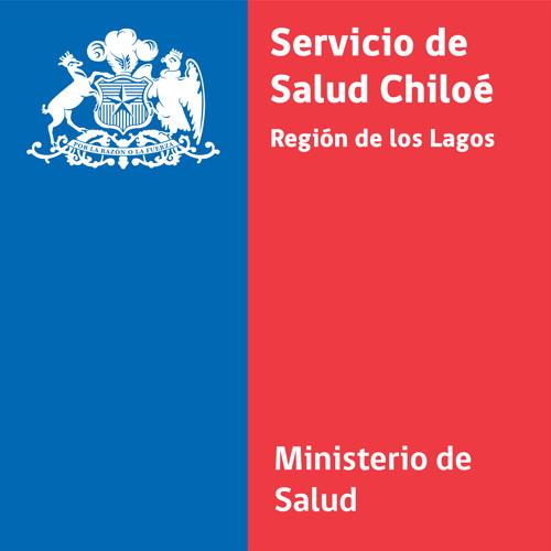 SaludChiloe's avatar
