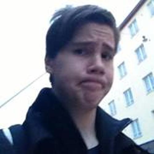 Viktor Edvards's avatar
