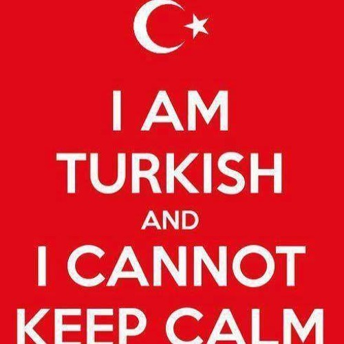 TurkishThunder's avatar