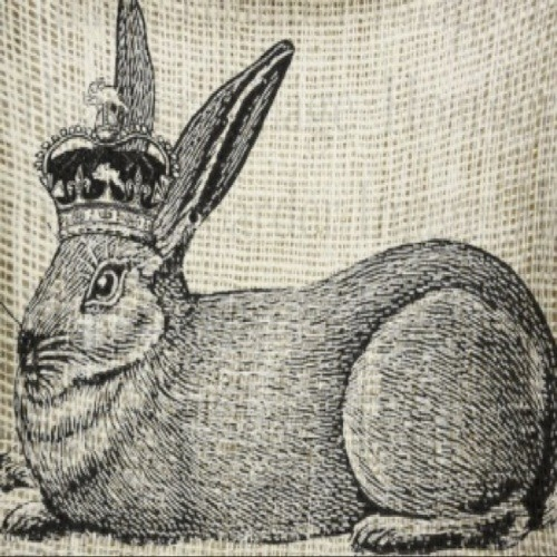 The Rabbit King's avatar