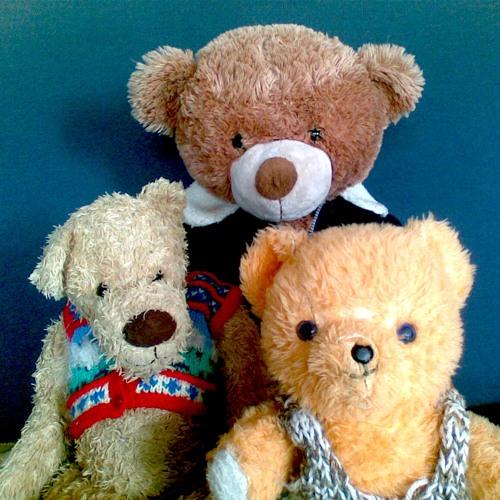 The Teds's avatar