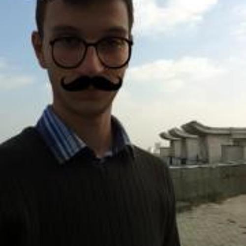 Theodor Moldoveanu's avatar