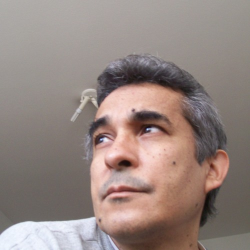 user96508686's avatar