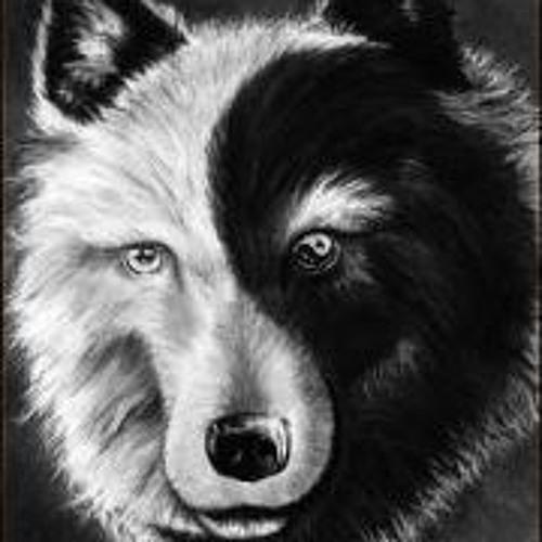 Ashgirlk9's avatar