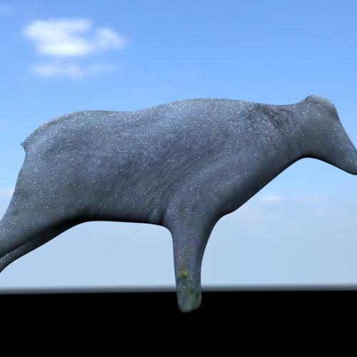 softegg's avatar