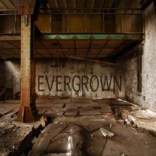 Evergrown's avatar