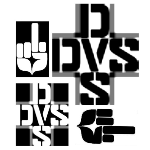 "DVS ""the last sessions""'s avatar"