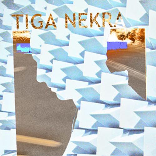 Tiga Nekra's avatar