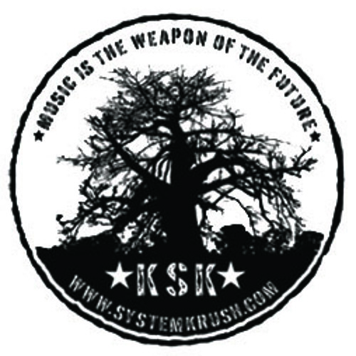 KSK RECORDS's avatar