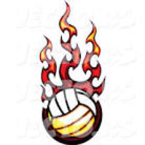 #1 VOLLEYBALL PLAYER's avatar