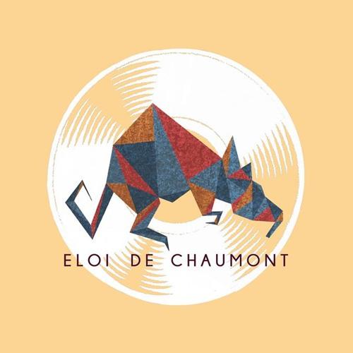 Eloi de Chaumont's avatar