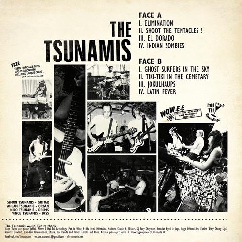 The Tsunamis's avatar