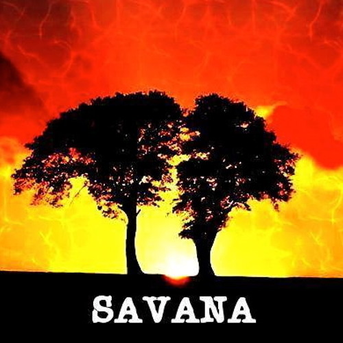Savana uk's avatar
