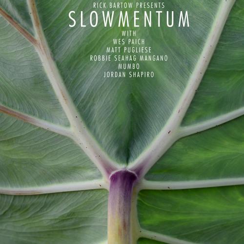 slowmentum's avatar