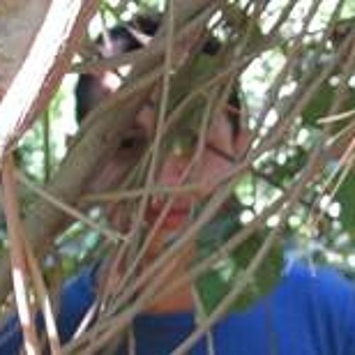 Mahmoud Mostafa's avatar