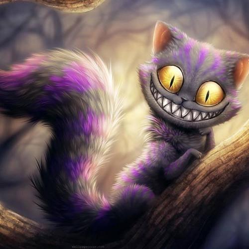 Alice W...'s avatar