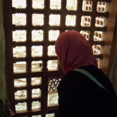 Shymaa El Sayed's avatar