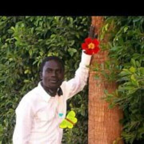 Babker Hassan's avatar