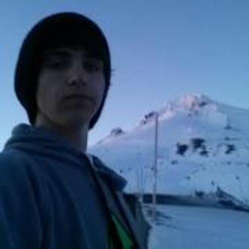 Dylbear1212's avatar