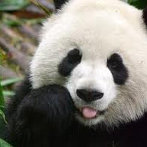 hendry_panda's avatar