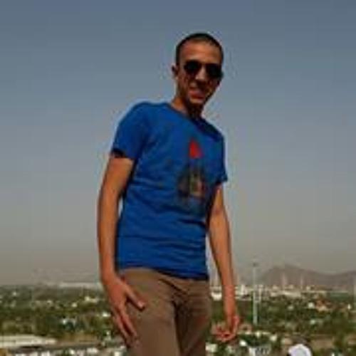 Samy Mohamed Elassal's avatar