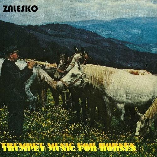 Zalesko's avatar