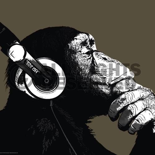 Primaat's avatar
