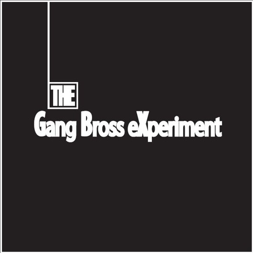 The Gang BroSs Experiment's avatar
