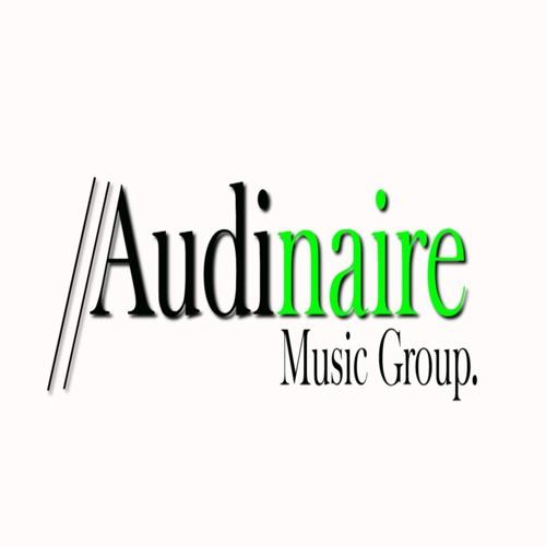 Audinaire Music Group's avatar
