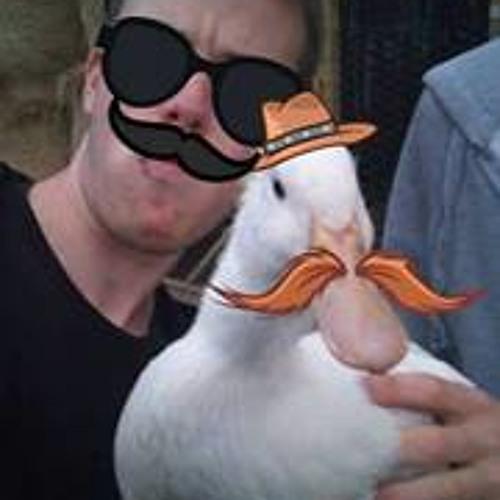 ducksteppa's avatar