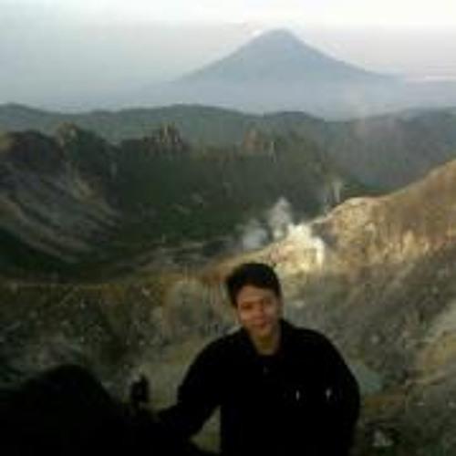 Muhammad Novriandy's avatar