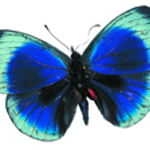 Ninon Butterfly's avatar