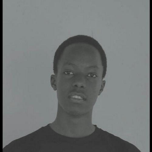 ruksflow's avatar
