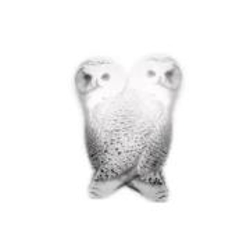 2 Owls Records's avatar