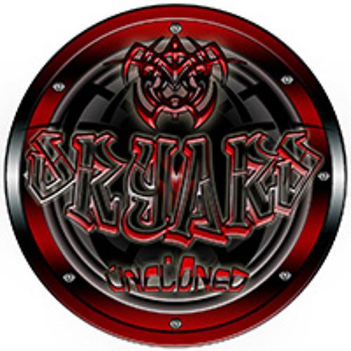 DRYARD's avatar