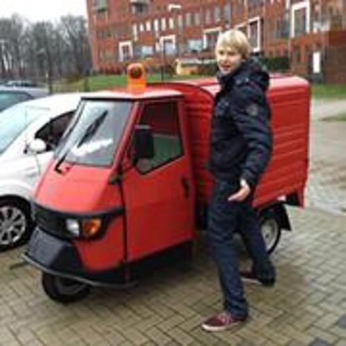 Henk Wolberts's avatar