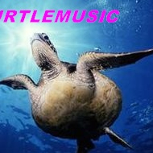 TURTLEMUSIC's avatar
