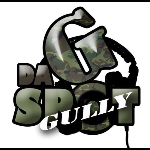 GULLY TEAM's avatar