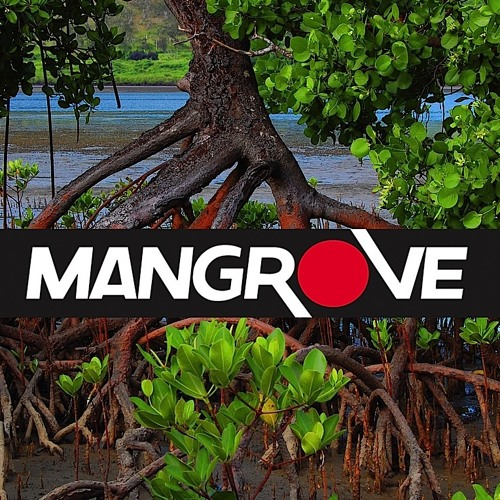 Mangrove Productions's avatar