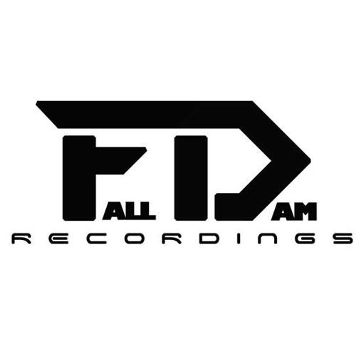 FallDam Recordings's avatar